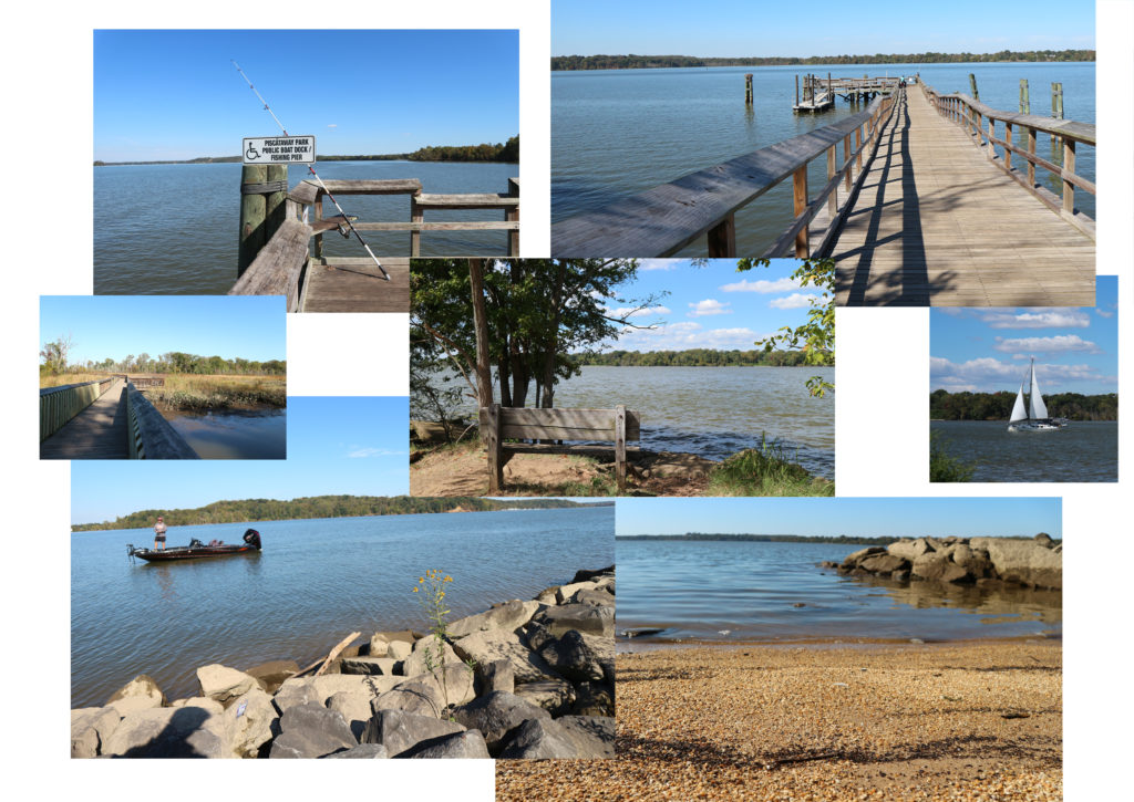 Collage of scenes from the shoreline of a wide river